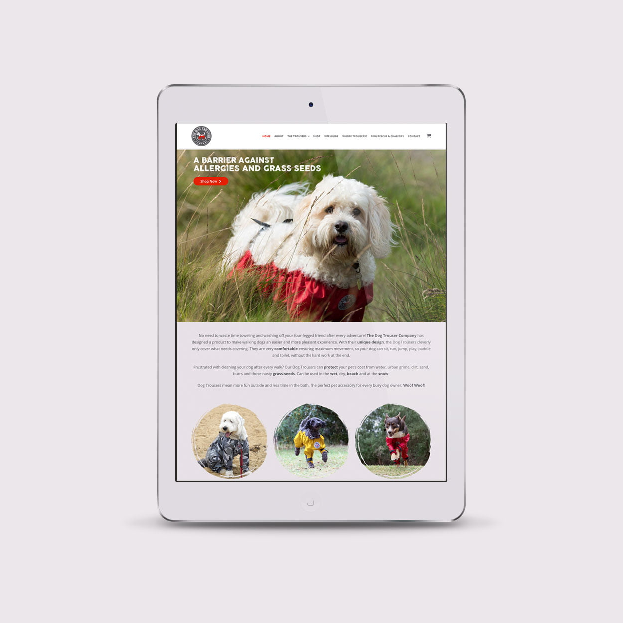The Dog Trouser Company website design