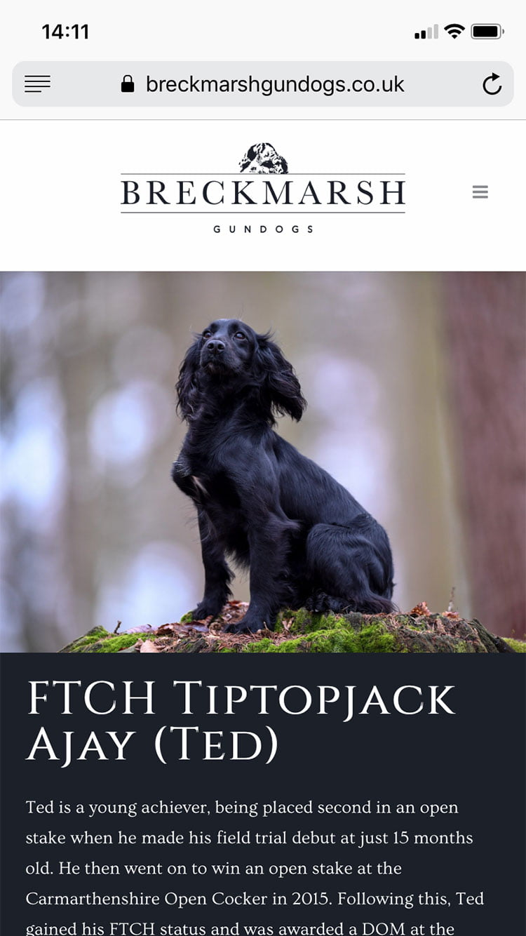 breckmarsh-gundogs-website-design-02